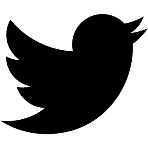Twitter logo, nr.2702, afmeting: 22mm x 22mm